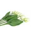 Tulpenbosje wit 6 stuks